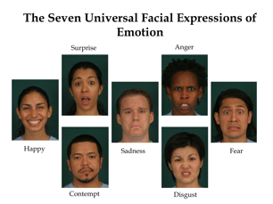 The seven universal facial expressions emotion