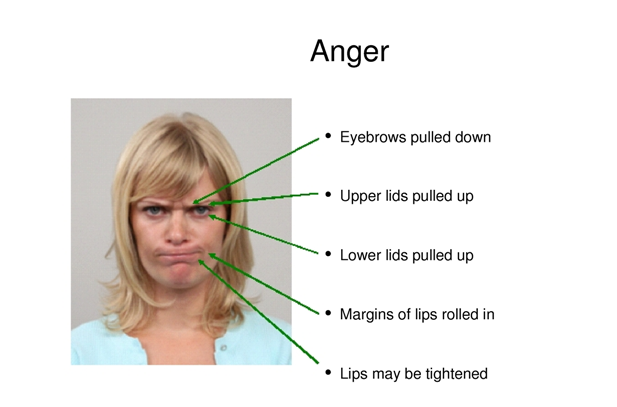 Universal Facial Expression- Anger