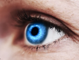 Blue Eye- Eye Contact Myth- Humintell