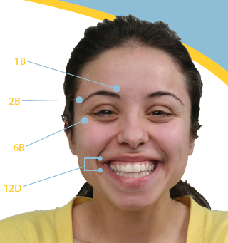 facial expressions research paper National academy of sciences research studies have been understanding the different categories of facial expressions of emotion regularly used by.